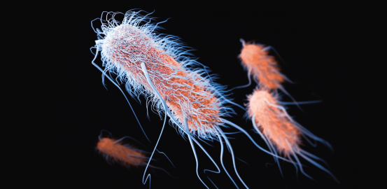 Super-bacteria are gaining ground