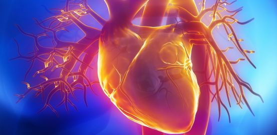 At the heart of cardiovascular technology